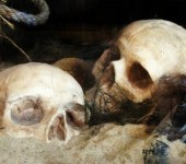 10 morbid but impressive places