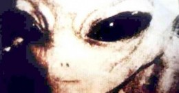 Facts about Alien Life Forms, Part I